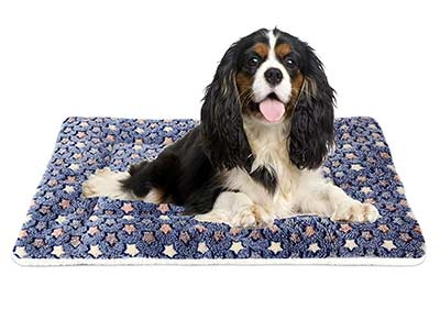 Mora Pets Ultra Soft Pet (Dog/Cat) Bed with Cute Prints