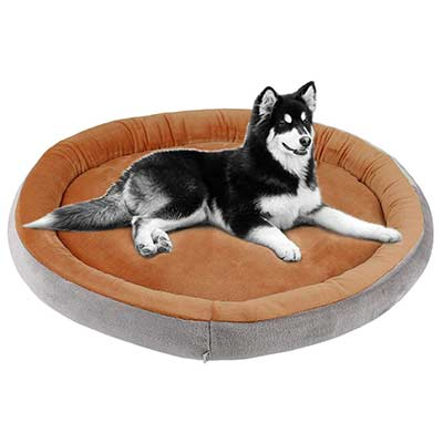 JoicyCo Dog Bed Extra Large Bed for Dogs and Cats Round