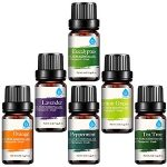 The 10 Best Fragrance Oil in 2021 Reviews