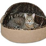The 10 Best Cat Beds in 2019 Reviews