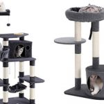 The 10 Best Cat Tree in 2019 Reviews