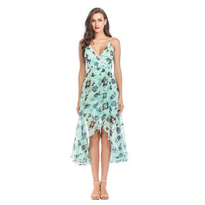 2- Ladies Sexy Print Dress