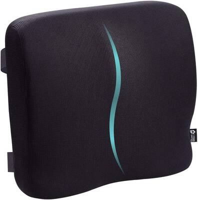 #8. 5 STARS UNITED Back Lumbar Support Cushion for Wheelchair Computer Car & Desk Seat