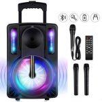 Top 10 Best Portable Karaoke Speakers in 2021 Reviews