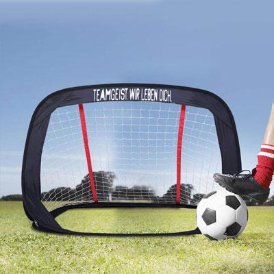 #1. WisHome Foldable Soccer Goal