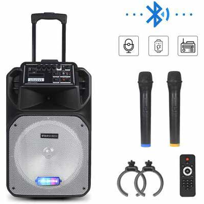 8. StarQueen Top Operation Panel 12Inch Subwoofer PA System Speaker Karaoke Machine