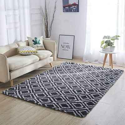 #4. LOCHAS Luxury Velvet Area Rug, Extra Soft & Comfy Carpet, Grey/White